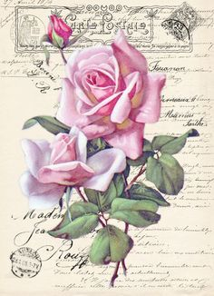 Vintage rose Digital collage p1022 free to use <3