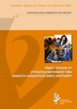Expert forecast on emerging psychosocial risks related to occupational safety and health / European Agency for Safety and Health at Work ; Emmanuelle Brun and Malgorzata Milczarek.   Editorial:  Luxembourg : Office for Official Publications for European Communnities,2007. http://absysnetweb.bbtk.ull.es/cgi-bin/abnetopac?TITN=413741