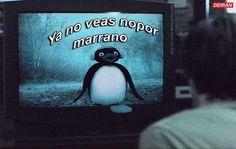 Jajaja jajaja Cute Memes, Dankest Memes, Funny Memes, Hilarious, Pingu Pingu, Pingu Memes, Im Falling In Love, Cartoon Profile Pictures, Meme Faces