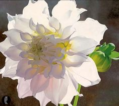 Brian Davis - Pale Pink Dahlia - Search Gallery One for Davis limited edition prints, giclee canvases and original paintings by internationally-known artists Watercolor Print, Watercolor Flowers, Watercolor Paintings, Watercolours, Art Floral, Brian Davis, Arte Pop, Fine Art Gallery, Botanical Art