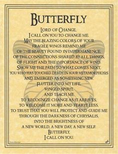 BUTTERFLY Parchment Page for Book of Shadows! • $1.85 - PicClick