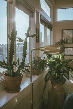 Plants, Instagram, Art, Art Background, Kunst, Plant, Performing Arts, Planets, Art Education Resources