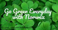 Norwex St. Patrick's Day Facebook banner. Social media. Go green everyday with Norwex.