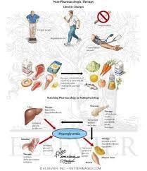 Afbeeldingsresultaat voor diabetes mellitus