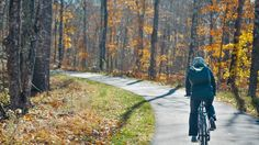 Five Great Trails for Fall Biking - View fall colors while bicycling on the best Minnesota trails this autumn: