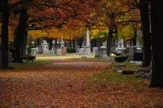 Rosehill Cemetery, Chicago, IL