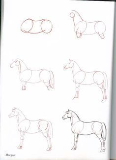 How-To-Draw-Horses - ~*Horse Heaven*~ Animal Sketches, Animal Drawings, Horse Drawings, Realistic Drawings, Pencil Drawings, Art Drawings, Drawing Projects, Drawing Lessons, Drawing Tips