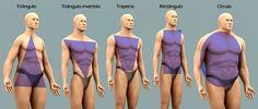 """Protocollum. Escuela """"Personalizada"""" de  Etiqueta, Protocolo e Imagen.: La Morfología masculina. Como influye el tipo de c..."""