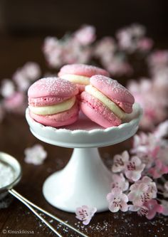 Vegan Macarons with Oatly Vanilla Custard
