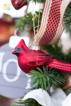 #redandgreen #redchristmasdecor #cardinal #christmascardinal #glassornament #christmas #christmastime #christmasseason #christmasvibes #christmasspirit #christmasdecorating #christmasdecor #christmasdecorations #christmashome #christmasinspiration #christmasinspo #vermeersgardencentre