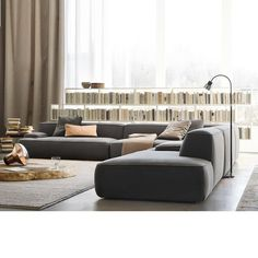 Grey - Living Room (Great idea to put in low bookshelves next to a window with a view )