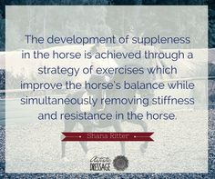 """""""The development of suppleness in the horse is achieved through a strategy of exercises which improve the horse's balance while simultaneously removing stiffness and resistance in the horse."""" - Shana Ritter artisticdressage.com"""