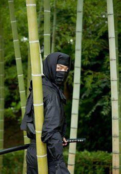 Very stealthy even during the day. Ninja Warrior, Samurai Warrior, Katana, Ninja Japan, Animal Crossing, Arte Ninja, Ninja Training, Female Ninja, Samurai Artwork
