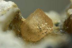 Hureaulite, Mn5(PO3OH)2(PO4)2•4(H2O), Eduardo Mine, Conselheiro Pena, Minas Gerais, Brazil. Fov 2.5 mm. Photo Stephan Wolfsried