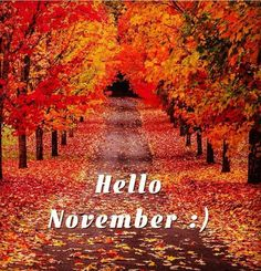 """"""" :) Have a beautiful Thursday! November Images, November Pictures, November Quotes, Fall Pictures, Good Morning Sunday Images, Good Morning Picture, Morning Pictures, Welcome November, Hello November"""