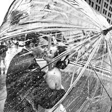 Você já deve ter visto fotografias de casamento, das mais sérias as engraçadinhas. O fotógrafo russo Emin Kuliyev busca o diferencial naquilo que clica.