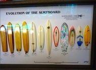 Evolución de la surfboard