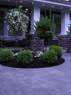 Front Yard Landscaping Make Over 8