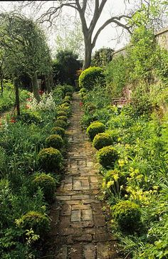 Barnsley House. Gloucestershire. Rosemary Verey's garden brick path with boxwood spheres in Spring - photo John Glover