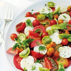 37 Fresh Tomato Recipes! (Prepping for the looming possibility of 9000 tomatoes in the garden..)