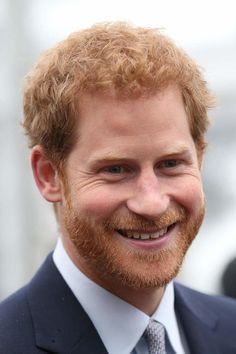 Prince Harry Wombat Nickname