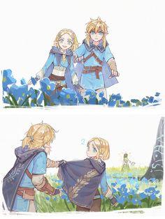 The Legend Of Zelda, Legend Of Zelda Memes, Legend Of Zelda Breath, Zelda Breath Of Wild, Breath Of The Wild, Image Zelda, Zelda Video Games, Link Art, Hyrule Warriors