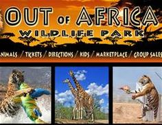 Out of Africa Wildlife Park - Yahoo Image Search Results