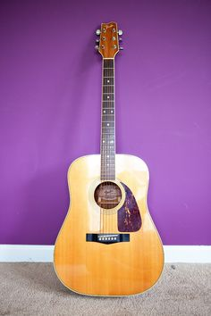 Fender F-250 Acoustic Guitar with Case