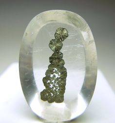 Pyrite in Quartz / Mineral Friends Oh Baby! Minerals And Gemstones, Crystals Minerals, Rocks And Minerals, Stones And Crystals, Natural Gemstones, Gem Stones, Mineralogy, Beautiful Rocks, Mineral Stone
