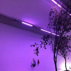 heart if u see/save/use  | We Heart It | purple, light, and grunge