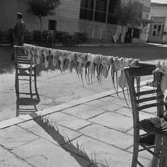 #Discoveringsummer through the #BenakiMuseum #collections: #Summertaste!!! #photo by V. Papaioannou from the #Benaki #Museum #photoarchives #greece #ig_greece #gf_greece #wu_greece #summertime #picoftheday #insta_greece #instacool #instagood #photooftheday #bnw #nature_greece #welovegreece #bw_greece #visitgreece #vintage_greece #travel_greece #greecestagram #beautiful #nice #like4liket #ig_bw