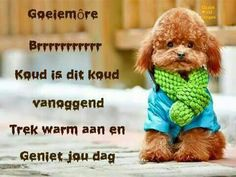 Good Night Wishes, Good Morning Good Night, Greetings For The Day, Afrikaanse Quotes, Goeie More, Strong Quotes, Humor, Words, Bitter