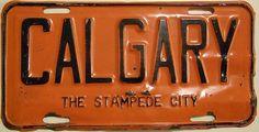 Calgary: The Stampede City 1954 Alberta license plate CALGARY front plate #retro