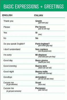 .basic words to learn and use