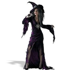 Sorceress Adult Costume... serious witch inspiration!
