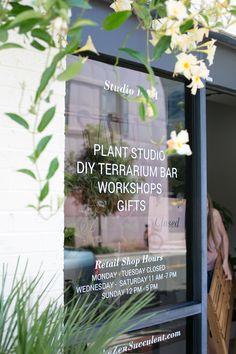 The ZEN Succulent | Shop window