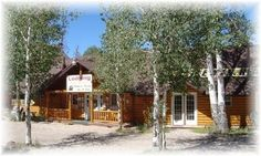 Cozy Mountain Lodge -10 BR/10ba-Rent -Great for Family Reunion