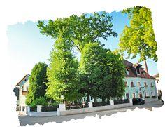 Ältestes Wirtshaus der Welt: Gaststätte Röhrl (Im Sommer)