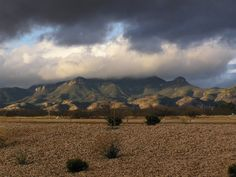 """Huachuca Mountains, Sierra Vista, Arizona. P.S. """"Huachuca"""" means thunder, as those of us who lived in the area know...also that the Huachuca's lived up to their meaning!!"""