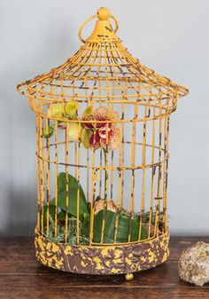Here Comes the Sunroom Decorative Birdcage, #ModCloth For someone who hates birds, I love birdcages