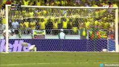Todos los Goles De La Selección Colombia, Eliminatoria Camino Al mundial FIFA Brasil 2014