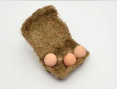 The 'Happy Eggs' egg carton packaging is made from heat pressed hay, which requires less manufacturing and is readily available in bulk quantities. Smart Packaging, Egg Packaging, Food Packaging Design, Packaging Design Inspiration, Luxury Packaging, Organic Eggs, Woodworking Magazine, Thinking Outside The Box, Box Design