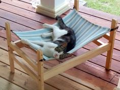 Ikea Chat, Diy Cat Hammock, Hammock Ideas, F2 Savannah Cat, Owning A Cat, Wooden Cat, Cat Room, Cat Furniture, Furniture Vintage
