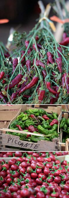 Markets in #Calabria are full of these! A #gourmet region ...with a zest