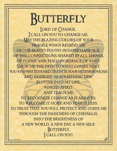 Butterfly Prayer Poster: Wiccan Leanings: Wiccan and Mystical Supply Store