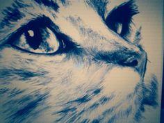 gato a lapiz grafito