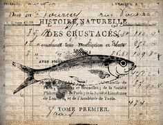 Antique French Fish Farm Limited Edition Digital Download for Tea Towels, Papercrafts, Transfer, Pillows, etc Burlap No 62210