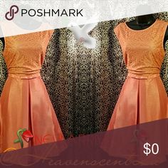 Pretty as a Peach🍑 Happy Spring  This beautiful dress is just the One for any special occasion. Fabrication is 100% Polyester that has a brushed sheen that closely resembles linen. Details include a lacy bodice and a flared A-line skirt that's lined. Self attached belt at the waist. Sleeveless. Back invisible zipper.  Lined  LENGTH 38'  Pin tucked for display only.  Thanks for stopping by my Posh Closet  Please come again soon  Ciao Just Taylor Dresses Midi