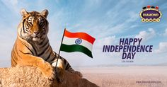 #DiamondRummyOn Independence Day Here's wishing your dreams of a new tomorrow come true…Now and Always,#IndianIndependenceDay2017Happy Independence Day to you.https://www.diamondrummy.com/