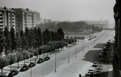 Madrid - Calle General Perón, 1955